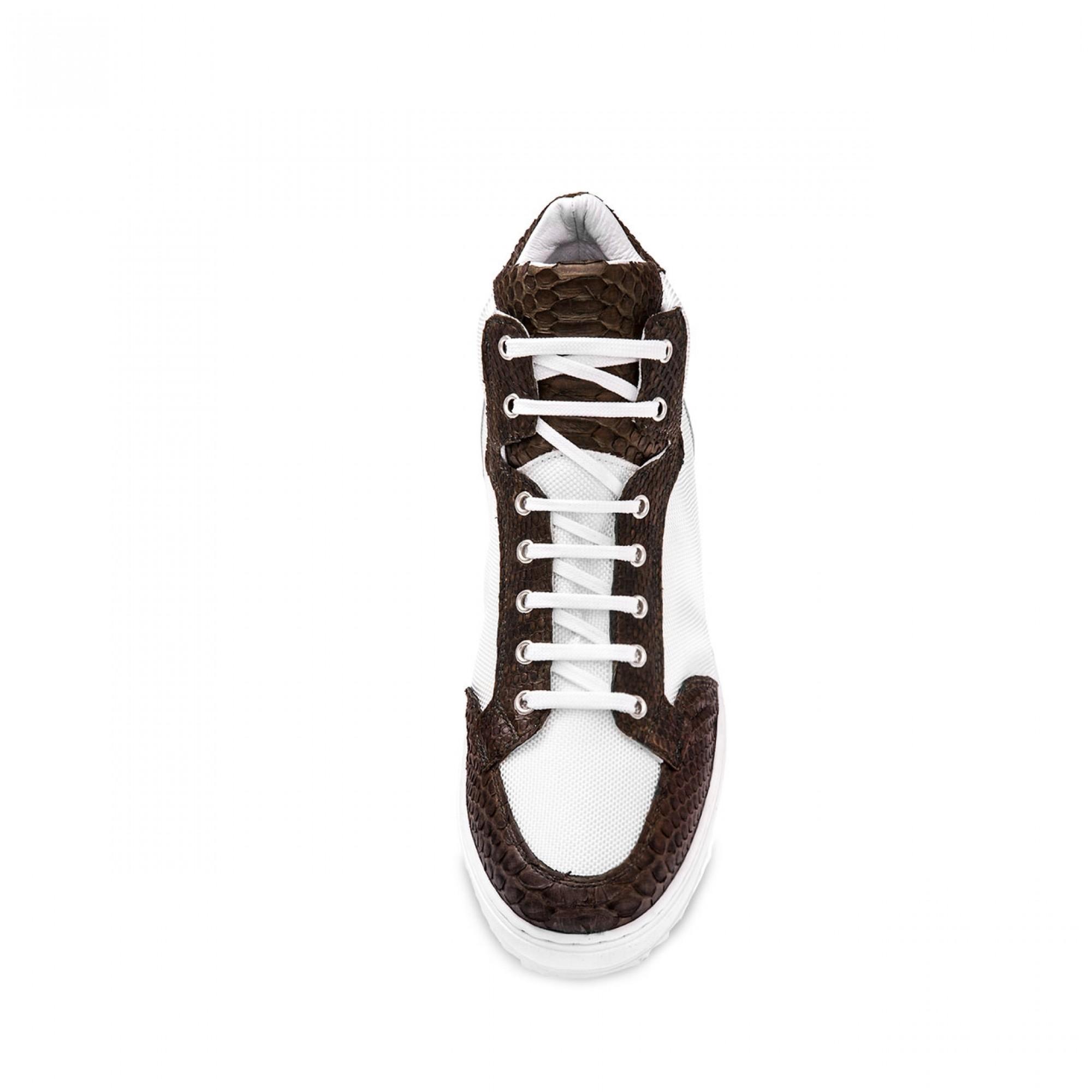 elvator sneakers