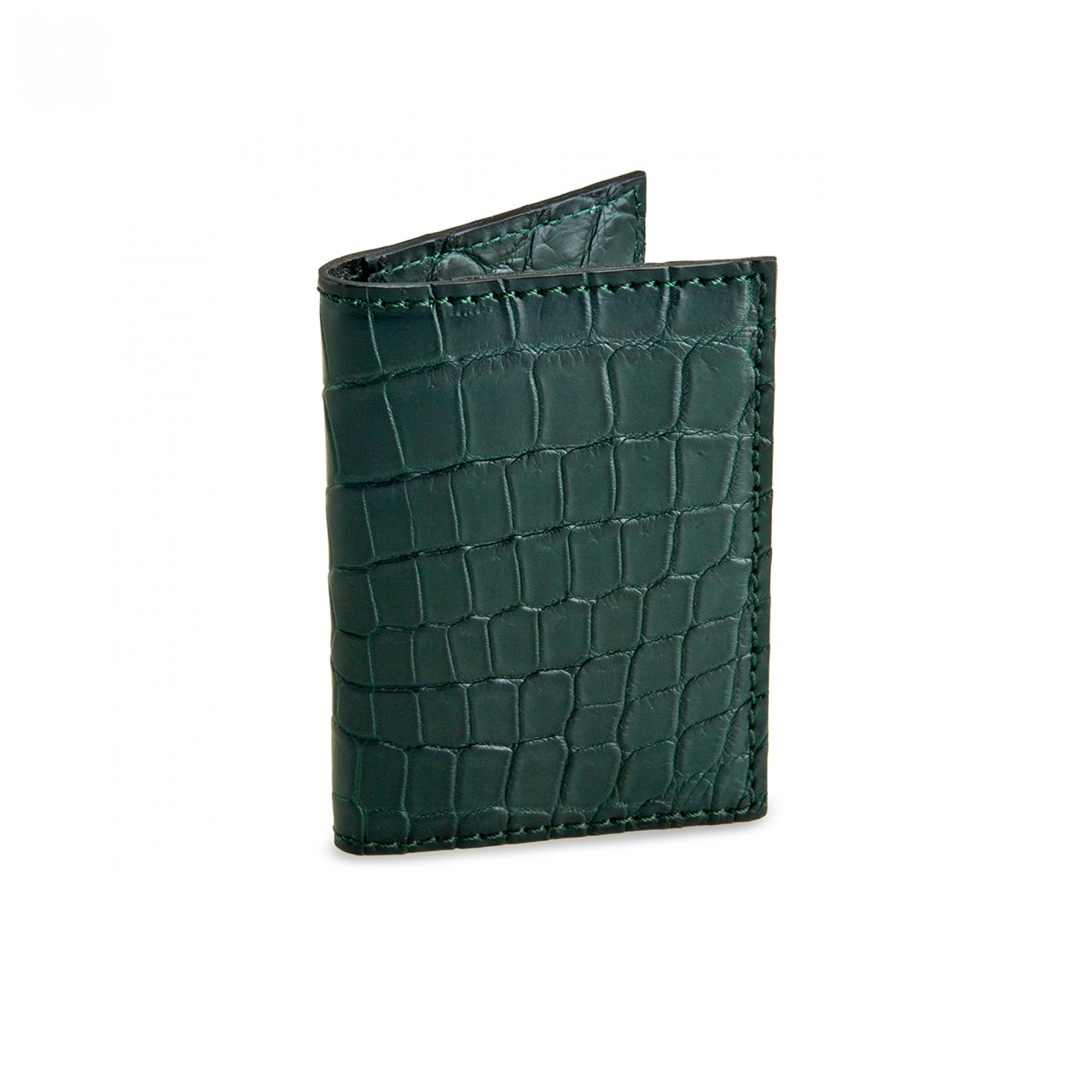 Crocodile document holder
